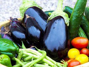 野菜の「旬」を重視します。