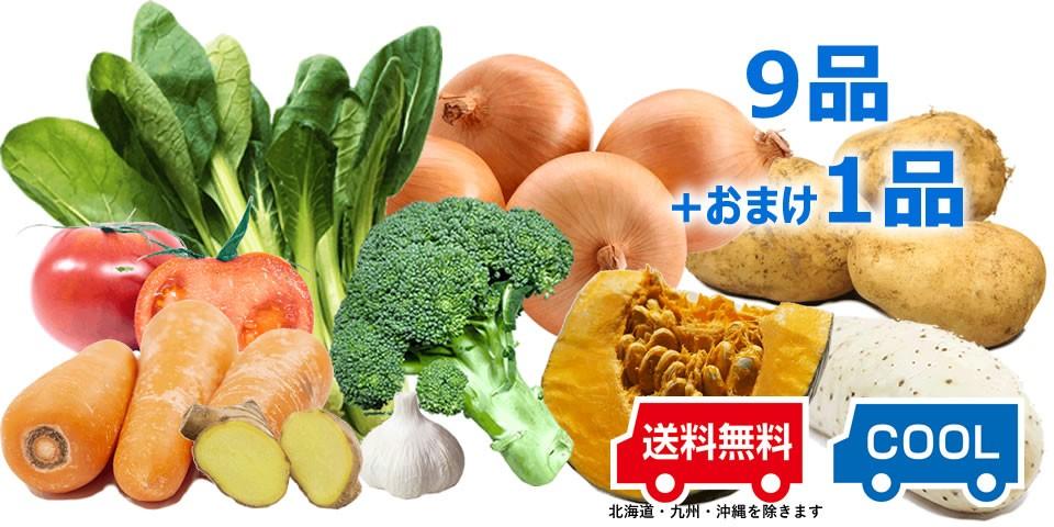 免疫力アップ野菜セット